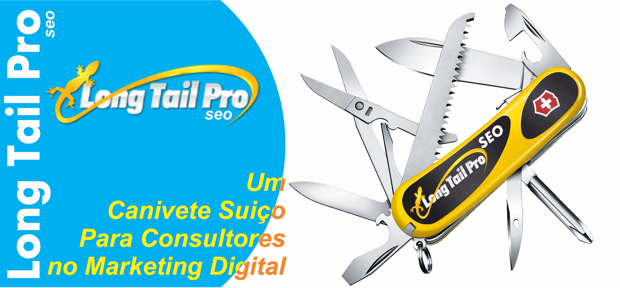 comprar long tail pro seo para consultores no marketing digital
